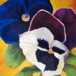 violen drie kleuren